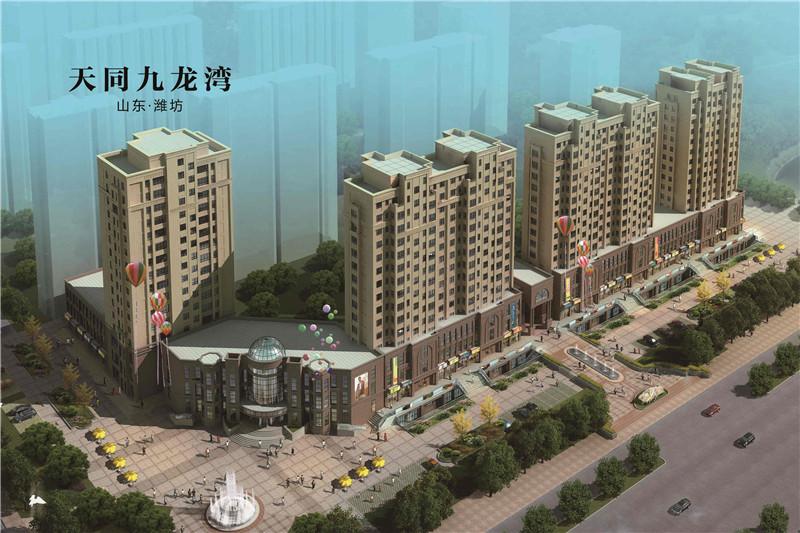 房地产营销策划案例-山东-天同九龙湾